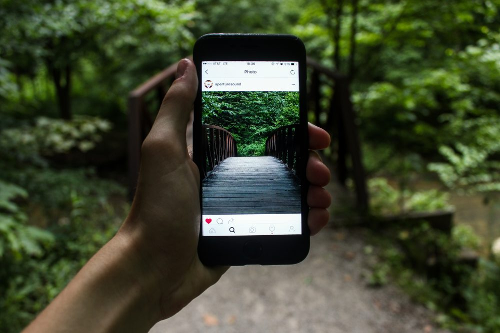 An Instagram photo with a forest background